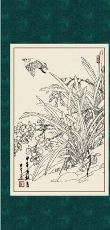 白描 兰花图片免费下载,白描 兰花设计素材大全,白描