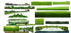 草坪 草地