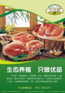 品牌猪肉DM单页