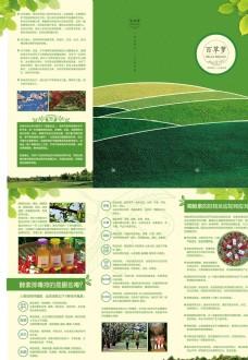 綠色酵素三折頁