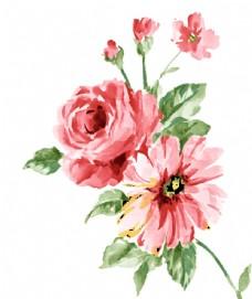 时尚水彩效果花卉