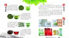 绿茶 画册 内页