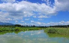 太白湖湿地景观