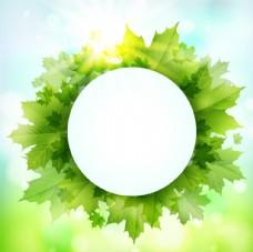 绿色枫叶装饰圆形标签背景
