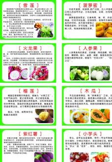 水果营养介绍