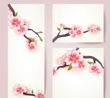 樱花花枝卡片